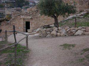 ISRAEL_30NOV_10DEZ_2005_PARTE_1_2005-12-03 120335