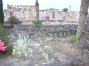 ISRAEL_30NOV_10DEZ_2005_PARTE_1_2005-12-04 124252